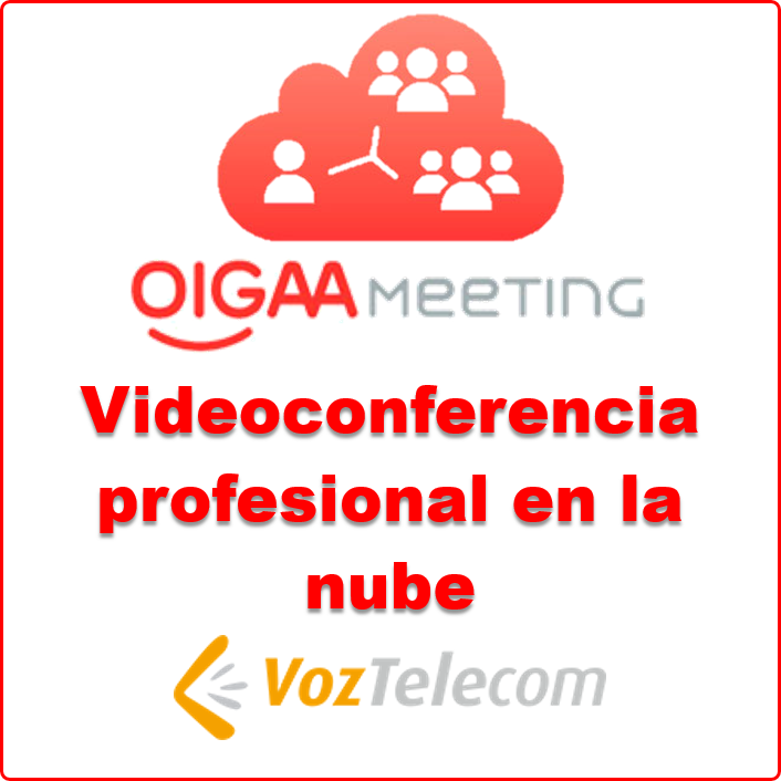 Videoconferencia profesional Oigaameeting